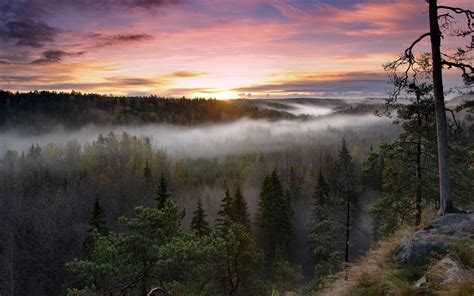 Foggy Sunrise National Park Wallpapers | HD Wallpapers