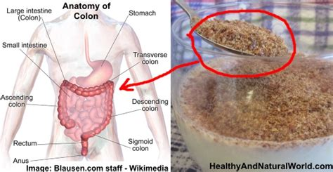 How to Cleanse the Colon with Flaxseeds and Kefir
