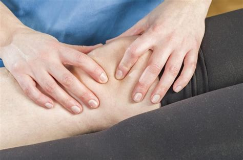 The Patella: Support for the Whole Body - Facty Health