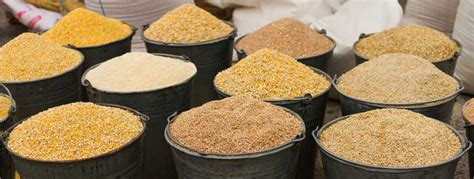 Feed Additives   Auxilife Scientific Services Pvt